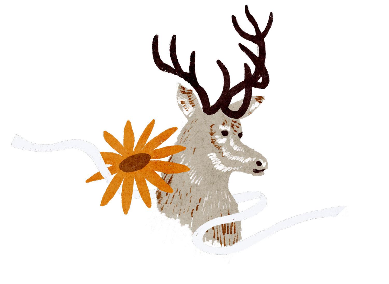 Illustration av en kronhjort.